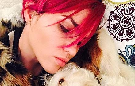 Dare U: Rose Blonde and Pink Hair