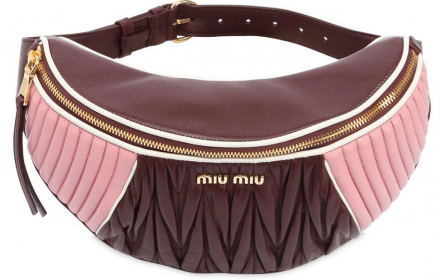 Miu Miu on my waist