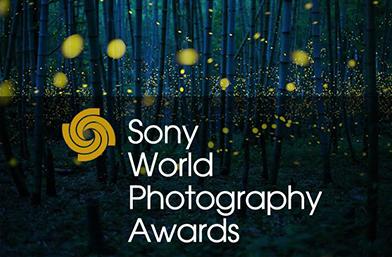 Конкурсът Sony World Photography Awards стартира своето издание за 2018 година
