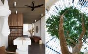 Дизайн за вдъхновение: фитнеси в Австралия, по-красиви от дом