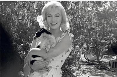 Евa Арнолд - фотографката, снимала някои от най-красивите фотоси на Мерилин Монро, почина на 99 години