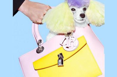Есенната кампания на чантите Dior
