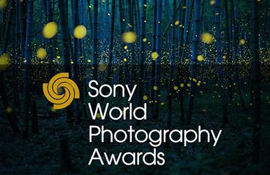 Световните награди за фотография на Sony 2017 разкриха най-добрата снимка от България