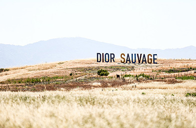 Dior Resort 2018: Sauvage