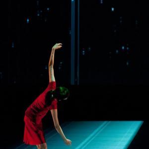 Да видиш невъзможното с Широ Такатани