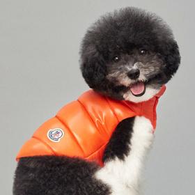 Moncler пусна лукс якенца за лукс кученца