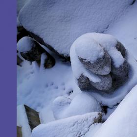 Един ден в детайли: 24-ият ден на януари, така снежен