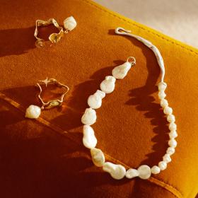 Autumn seashells