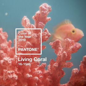 Корал: Цветът на 2019-та