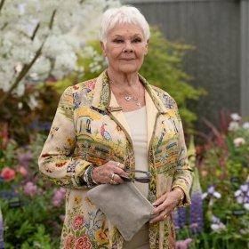Как TikTok спаси Джуди Денч, 85, в самоизолацията