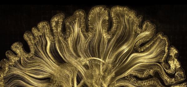 Symbiartic: изкуство чрез наука