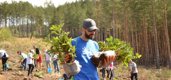 Гора от 12 000 дръвчета засадиха служителите на TELUS International близо до София