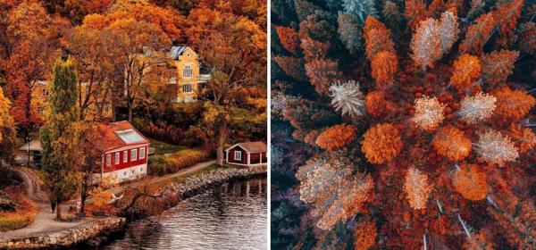 Словото на есента в 15 цитата