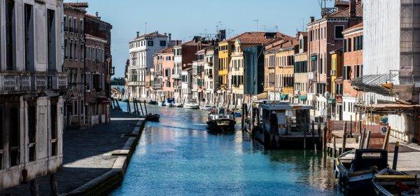 Наръчник на оптимиста: Венецианските канали са чисти и пълни с рибки!