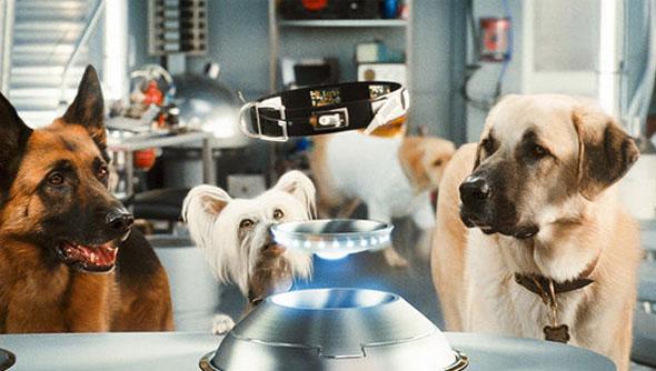 """Кучета и Котки- """"Отмъщението на Кити Галор""""."""