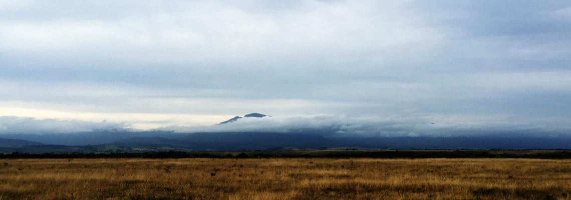 #ootd: Beyond the denim blue horizon