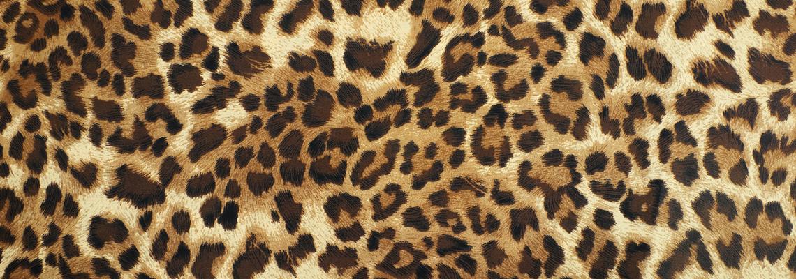 Да или Не: Дивото леопардче на Хелън Мирън