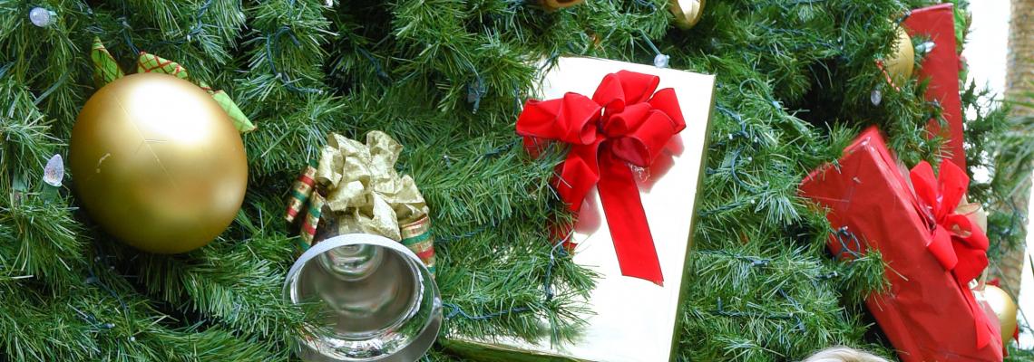 Един ден, един (Bulgaria) Mall - всички Коледни подаръци. Мисията възможна!