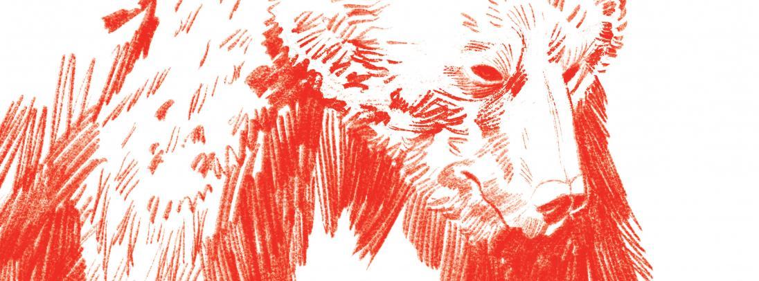 Първият роман на Йордан Радичков и единственото произведение с криминална тематика на автора