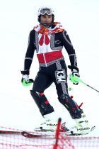 2014: Хубертъс фон Хофенлое-Ландербург Мексико изпраща само един спортист, който да представлява държавата на Зимните Олимпийски игри през 2014 г. - и му се получава много добре. Принц Хубертъс фон Хохенлое се състезава в ски костюм, наподобяващ традиционнотомариачиоблекло.