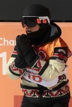 2018: Отборът по сноуборд на Канада На Зимните Олимпийски игри през 2018 г. канадският отбор по сноуборд показа своите трикове със стил. Художничката проектирала принта от якетата им, черпи вдъхновение от индианското си наслество, за да измисли якета, които да приличат на плетени пуловери.