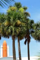Кейп Канаверал, Флорида Със 120-те си километра разстояние от плажната ивица и три значителни национални парка, е лесно да се каже защо тази дестинация се изкачва все по-нагоре в #trending списъка.